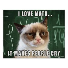 "Siamese Cats Applehead Grumpy Cat Poster- I love math it makes people cry - This was made by request for all the math teachers out there! Features the original Grumpy Cat photo over a chalk board with the caption ""I love math. It makes people cry. Grumpy Cat Quotes, Funny Grumpy Cat Memes, Funny Animal Memes, Funny Animal Pictures, Funny Cats, Funny Animals, Cute Animals, Funny Memes, Hilarious"