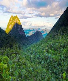 Masoala National Park ,Madagascar - Travel Pedia