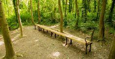 Amiens bench