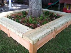 reclaimed pallet. The arborist told us to do something to build up the ground around the roots of our tree so the lawnmower doesnt keep chewing them up... - Darling Stuff