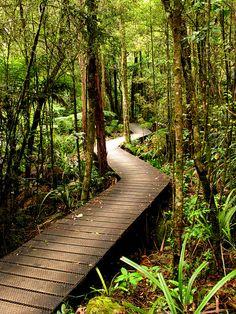 New Zealand I will go here someday!!