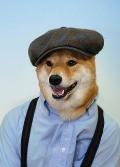 Menswear Dog www.MadamPaloozaEmporium.com www.facebook.com/MadamPalooza