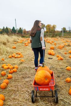 Winter / Fall Fashion What to wear Pumpkin Picking - vineyard vines green quilted hunting vest ll bean plaid duck boots elbow patch hunting turtleneck sweater Fall Photos, Cute Photos, Cute Fall Pictures, Fall Pics, Pumpkin Patch Photography, Pumpkin Patch Pictures, Pumpkin Patch Outfit, Pumpkin Patches, Pumpkin Picking