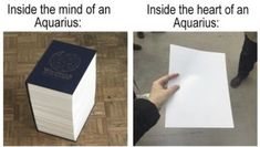 Aquarius And Cancer, Aquarius Art, Astrology Aquarius, Aquarius Quotes, Age Of Aquarius, Zodiac Signs Horoscope, Zodiac Star Signs, Astrology Signs, Aquarius Funny