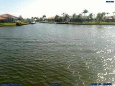 Live webcam on Blue Jay Canal in Cape Coral, Florida. You can see boat traffic pass by the camera throughout the day. This canal has direct access to the Gulf of Mexico.