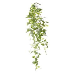 Hanging Trandescantia Foliage, 41'' Hanging Pots, Green Plants, Artificial Plants, Houseplants, Planter Pots, Decoration, Herbs, Make It Yourself, How To Make