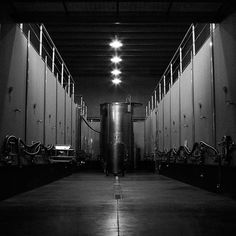 The black and white mood continues at Arianna Occhipinti winery during #EsploraSicily tour