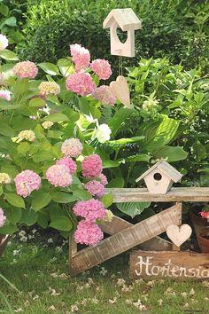Hydrangea Bush, Hydrangea Garden, Hydrangea Flower, Hydrangeas, Most Beautiful Flowers, Pretty Flowers, Beautiful Gardens, Green Flowers, Large Flowers