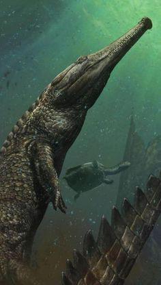 machimossaurus rex