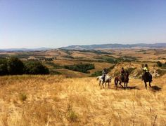 Amazing views horseback riding through Tuscany in summer