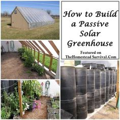 The Homestead Survival | How to Build a Passive Solar Greenhouse | http://thehomesteadsurvival.com - Gardening
