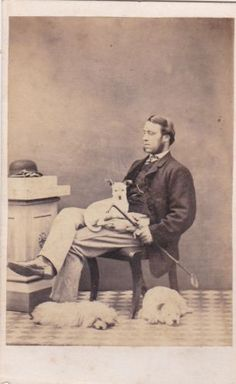 Sitting Poses, Small Dogs, Vintage Photos, War, Studio, Pets, Antiques, Painting, Animals And Pets