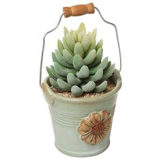 Amazon.com: Country Rustic Ceramic Bucket Pail Shape Daisy Design Mini Plant Flower Planter Pot, Green - MyGift® Home: Patio, Lawn & Garden