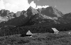 Hala Gasiennicowa, Tatra Mountains, Poland #Tatry #Polska