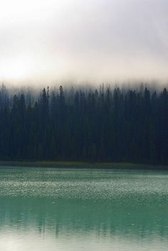 Emerald Lake Mist, Yoho National Park - BC, Canada.