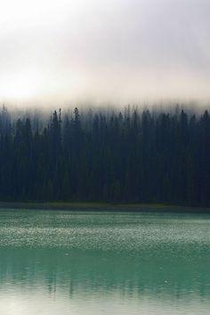 Emerald Lake Mist, Yoho National Park - BC, Canada.