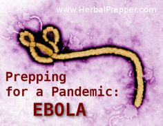 A child in Uganda has tested positive for Ebola in the first cross-border case of the deadly virus since an outbreak started in neighboring Congo last year. Congo, Uganda, Institut Pasteur, Dengue, World Health Organization, West Africa, South Africa, Emergency Preparedness, Sierra Leone