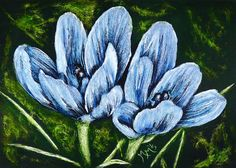 NFAC Original ACEO Scratchboard Art  BLUE CROCUS Spring Flower Floral Scratch  #Miniature