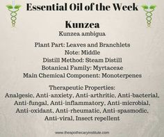 I am having fun learning more about this week's oil of the week! Kunzea seems to be a lesser known essential oil with some strong possibilities for healing power. Get an in depth profile when you sign up for the monthly newsletter at www.theapothecaryinstitute.com
