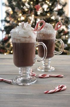 "zcocktails: ""Candy Cane Hot Chocolate INGREDIENTS: 1 oz Whipped Cream flavored vodka, you could substitute vanilla vodka ¼ oz Peppermint Schnapps Tbsp of Hot Chocolate Mix (or a packet or your favorite kind) Whipped Cream Water or Milk, whatever. Chocolate Vodka, Hot Chocolate Mix, Hot Chocolate Recipes, Cocoa Recipes, Chocolate Food, Christmas Drinks, Christmas Baking, Christmas Treats, Christmas Chocolate"