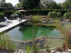 piscina natural 1biotop