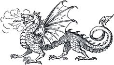 This is best Dragon Clipart Free Dragon Clip Art The Graphics Fairy for your project or presentation to use for personal or commersial. Dragon Line, Dragon Art, Graphics Fairy, Free Graphics, Dragon Pictures To Color, Realistic Dragon, Medieval Dragon, Medieval Art, Dragon Coloring Page