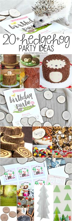 Plan the ultimate birthday party with these 20+ hedgehog party ideas!