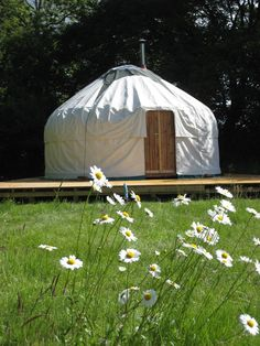 Ivy Grange Farm, four yurts in Sussex near the beaches