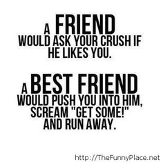 What is a friend and a best friend - Funny Pictures, Awesome Pictures, Funny Images and Pics