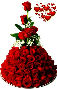 good morning roses images gif * good morning roses images _ good morning roses images for her _ good morning roses images gif _ good morning roses images love Beautiful Flowers Wallpapers, Beautiful Rose Flowers, Love Flowers, Arrangement Floral Rose, Rose Flower Arrangements, Morning Rose, Good Morning Flowers, Rose Flower Wallpaper, Happy Birthday Flower