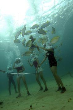 Sea Walker with Club Aqua Bali