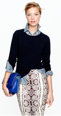 chambray w/snakeprint skirt  About All and Nothing At All