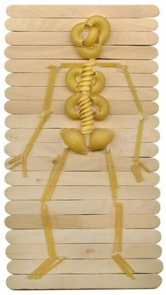 Creating skeletons from pasta is a fun way to mix art with science. MATERIALS Craft sticks, 24 per student Glue (Craft glue is recommended) Pasta: Macaroni, spaghetti, shells and twists … Read More