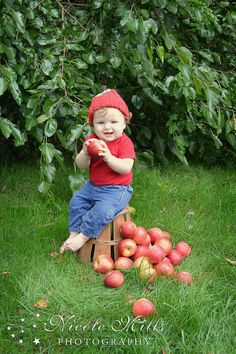 """when I see apples..whether the fruit itself or motifs...I think """"abundance""""."""