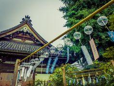 Behind the Hondo(main temple ura) by Hiro Nishikawa on 500px