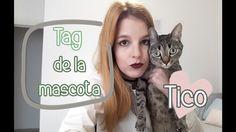 Tag de la mascota // Tico y otras formas de adorar a un gato