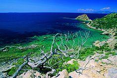 Mar Morto, Monte Argentario, Costa d'Argento, Maremma, Tuscany, Italy