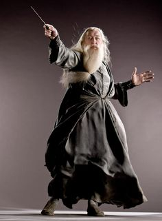 1000 images about albus dumbledore on pinterest albus for Most powerful wand in harry potter