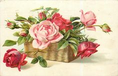 roses, red & pink blooms & buds in oblong wicker basket