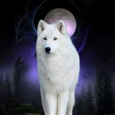 Moon Wolf Art