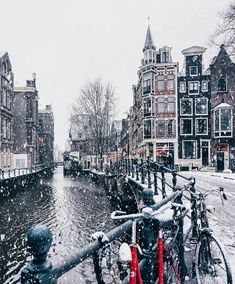 Winter in Netherlands Winter Szenen, Winter Magic, Winter Christmas, Winter Europe, Autumn Fall, Christmas Aesthetic, Winter Photos, Winter Photography, Amazing Photography