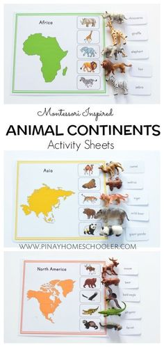 Animal continent sheets Informations About Montessori Inspired Animal Continents Activity Sheets Pin Montessori Preschool, Montessori Education, Montessori Materials, Preschool Learning, Kids Education, Preschool Activities, History Education, Teaching History, Dinosaur Activities
