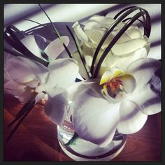 Samples #roses #orchids Pretty Flowers, Orchids, Roses, Plants, Beautiful Flowers, Pink, Rose, Plant, Planets