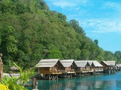 """Pearl Farm, Philippines - I actually stayed in the very first """"hut"""" shown here."""