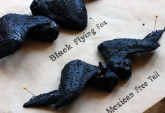 bat wings - Chicken wings marinated and baked in a sticky black sauce, food coloring added.