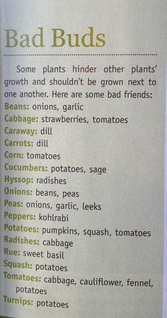 Urban Farm Mag - not companion plants. There is also a Companion Planting Guide on this site.