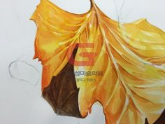 안녕하세요~ 이제 어느새 여름이 왔네요 날도 더워지고 학생들도 1학기 마지막 기말고사 시험을 준비하는 ... Colorful Drawings, Coloring, Watercolor, Fine Art, Pen And Wash, Watercolor Painting, Colourful Designs, Watercolour, Visual Arts