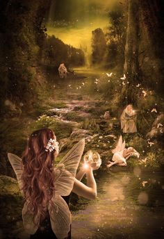 A new Fairy Forest by lauraypablo.deviantart.com on @DeviantArt