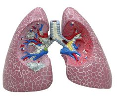 Helpful COPD resources.  Updated weekly.