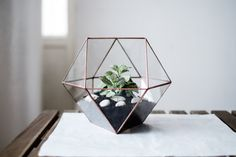 handmade glass terrarium  (copper patina)      height 22 cm  width 23 cm      plants, soil and stones are not included          if you want to